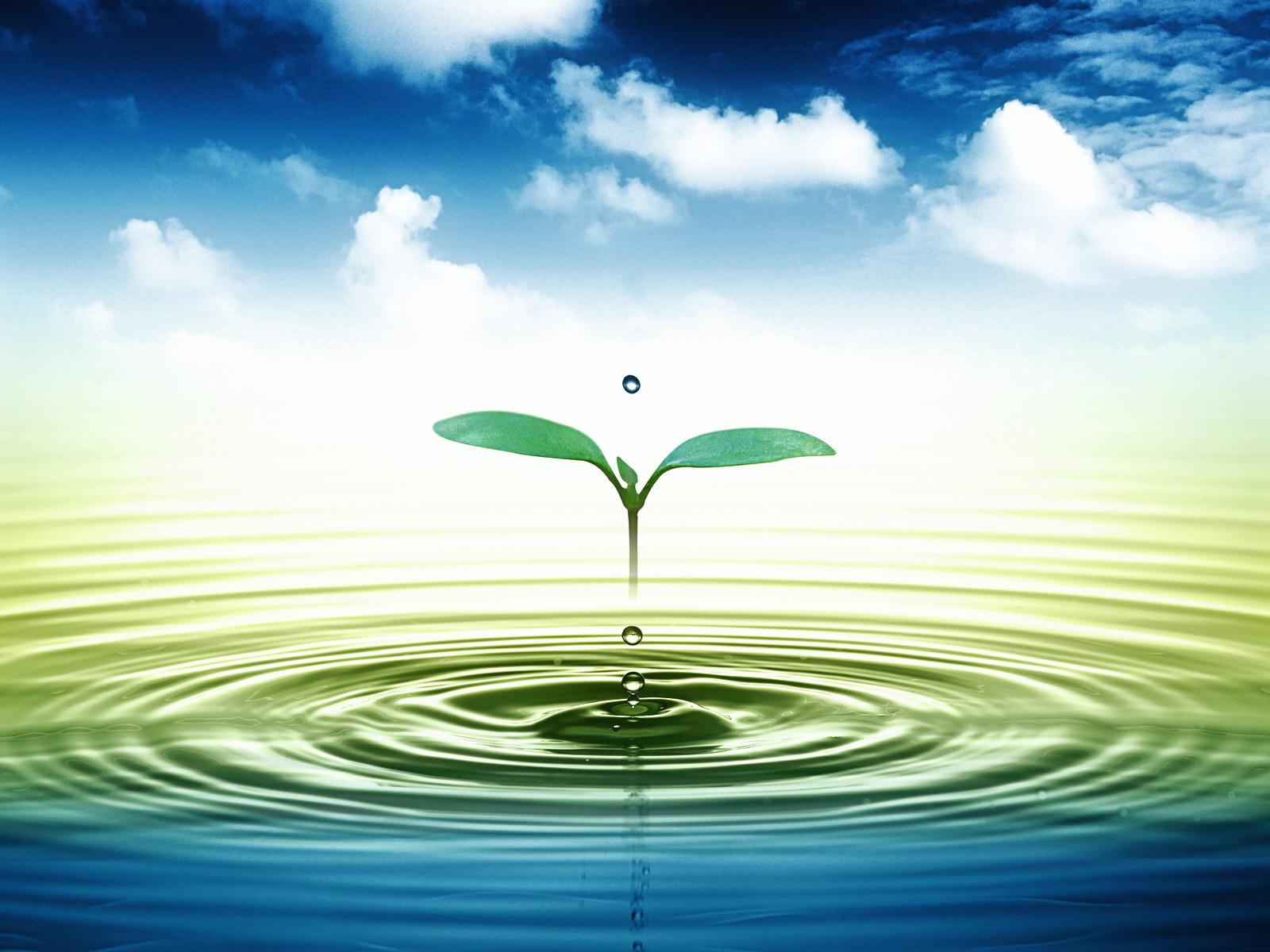 Ô nhiễm nước và các nguyên nhân gây ô nhiễm nguồn nước