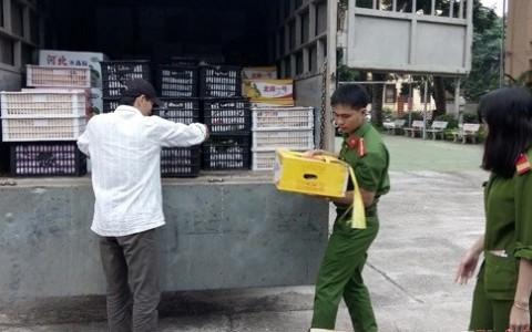 Nghệ An bắt giữ 1,8 tấn hoa quả Trung Quốc không có giấy tờ hợp lệ