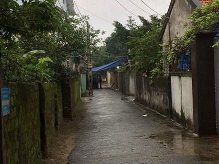 Người đàn ông tử vong do ong độc đốt ở TP Vinh Nghệ An